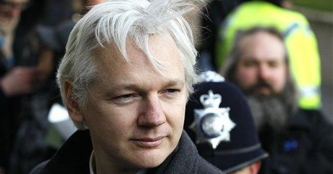 WikiLeaks' Assange plans bid for Australian Senate