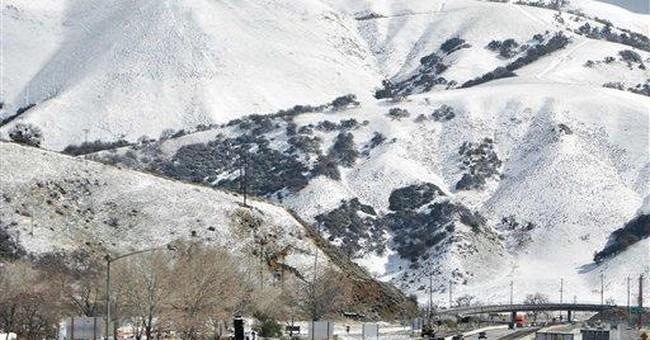Storm-weakened tree kills sleeping child in Calif
