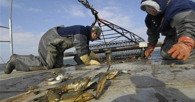 Maryland hopes to win sales with sustainable crab