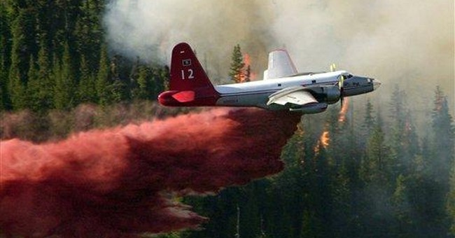 US senators want review of air tanker strategy