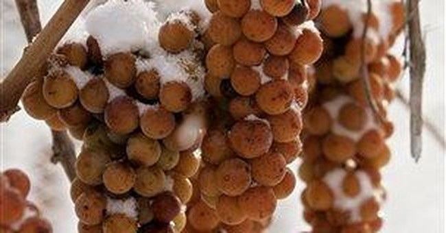 Mild winter creates problems for ice wine makers