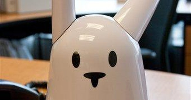Review: Wi-Fi bunny improves, still seeks purpose