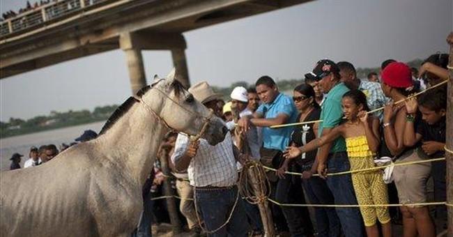 Venezuelan horse race preserves cowboy customs