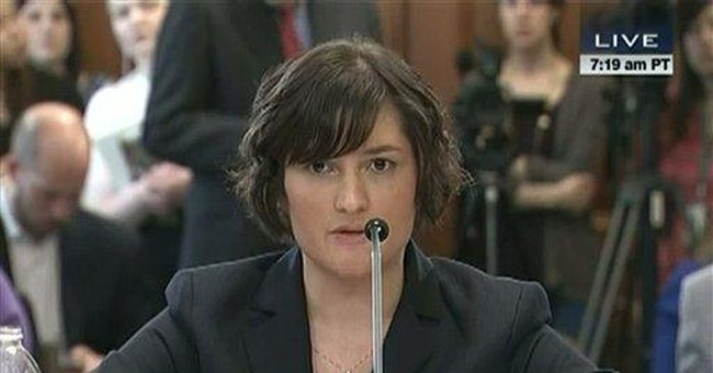 The IRS: A Public Monument to Sandra Fluke's Privates