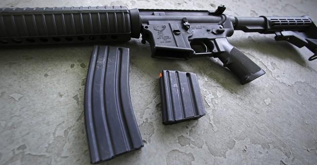 Gun debate shows how a fiery minority can prevail