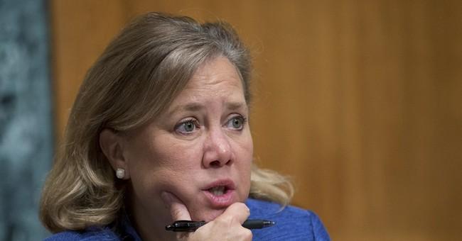 Gun measures put moderate Senate Dems in bind