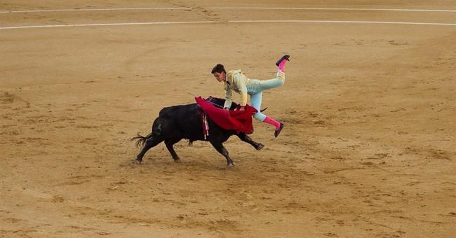 Coetzee tells Spain: Drop pro-bullfighting law