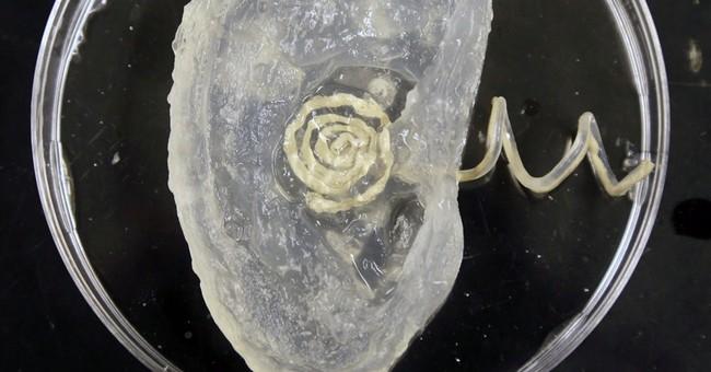 Princeton researchers create 'bionic ear'
