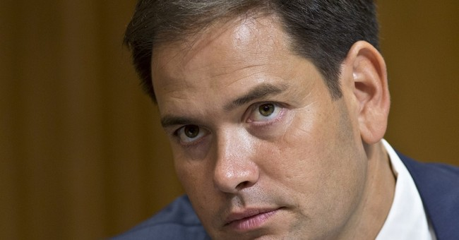 Rubio reconnects with tea party activists