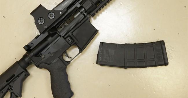 California gov. vetoes semi-automatic rifle ban