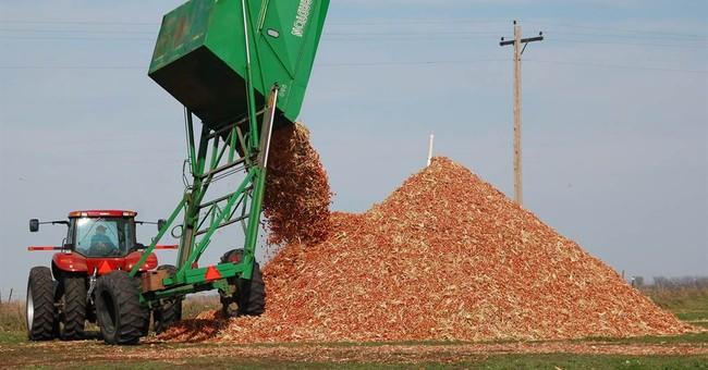 Despite court ruling, EPA raises biofuel estimate