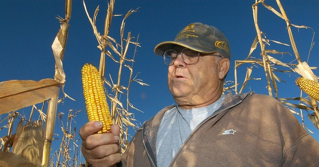 Next generation of biofuels is still years away