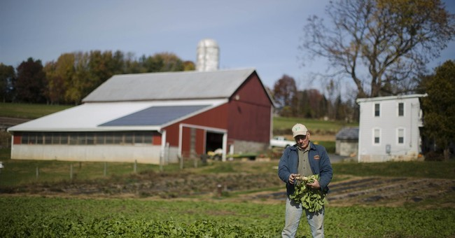 Farm Subsidies Can Affect Your Health