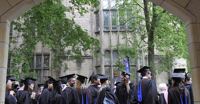 Studies Majors: Higher Education's New Special Ed