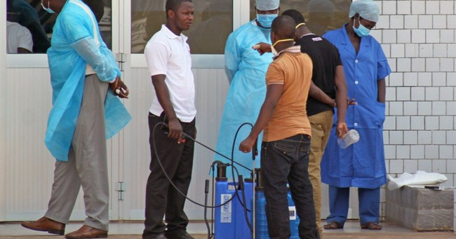 Ebola virus in Africa outbreak is a new strain
