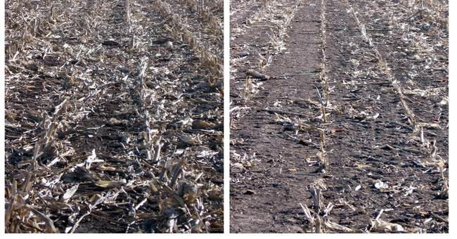 Study: Fuels from corn waste not better than gas