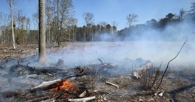 Wind, dry conditions fuel New Jersey fires