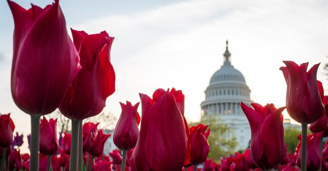 Congress returned to work to do the bare minimum