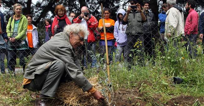 European volunteers help Greek 'bailout gardens'