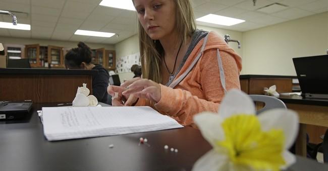 High school ag programs flourish as farms dwindle
