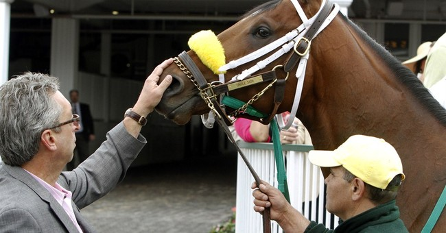 Name game: How the Derby horses got their names