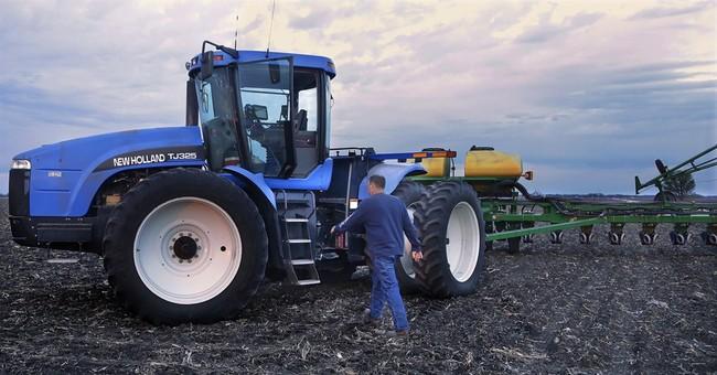 USDA: US corn yields to offset lesser acreage