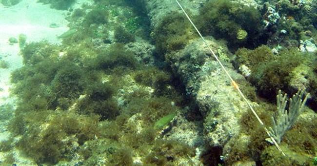 Explorer: Shipwreck off Haiti may be Santa Maria
