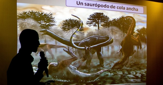 Argentine dino find: long-necks survived Jurassic