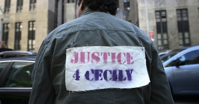 Occupy activist gets 90 days in jail in assault