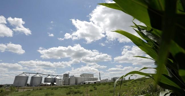EPA mulls ethanol change as industry profits soar