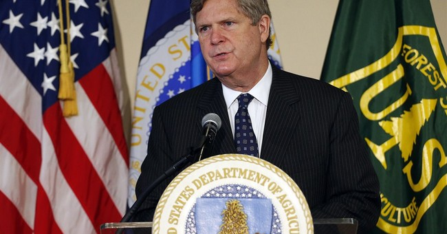 Ag secretary: US must figure out hemp production