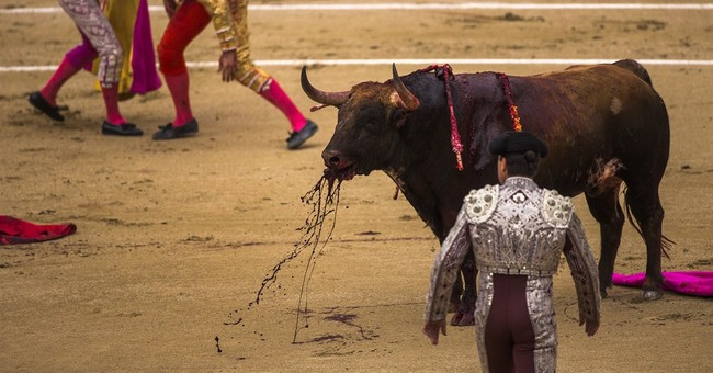 Spanish bulls in symbolic knockout victory