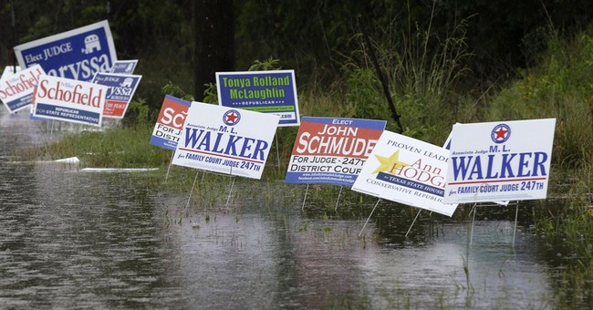 5 things to know about the Texas runoff elections