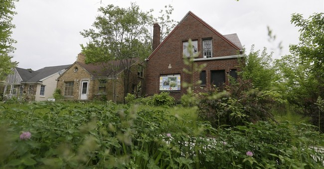 Cost to remove some Detroit blight: $850 million