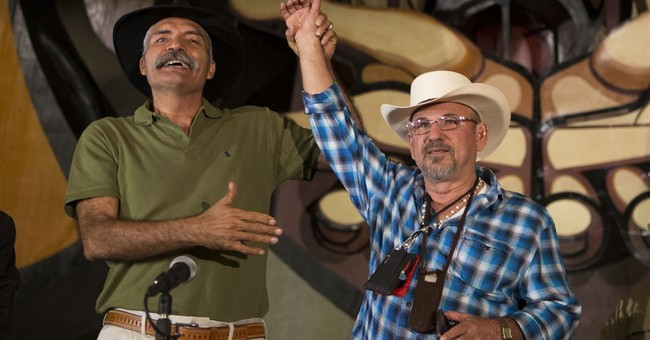 Mexico vigilantes urge more 'self-defense' groups