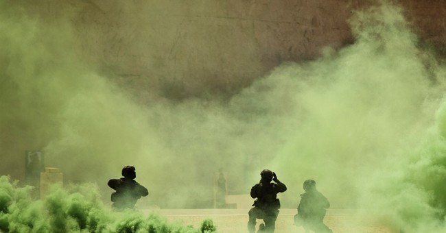 US eyes training moderate Syrian rebels