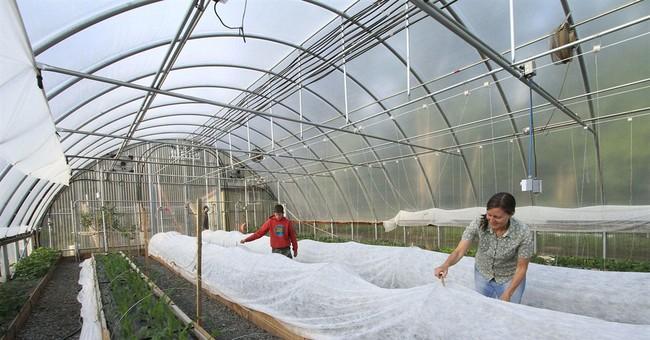 High tunnels extend Alaska's growing season