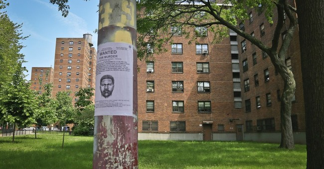 New York City stabbing suspect charged with murder