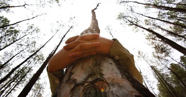 Thousands in Nepal hug trees in world record bid