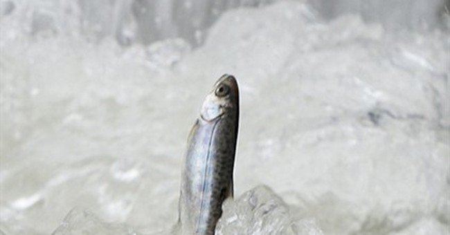 EPA agrees to pesticide buffers to protect salmon
