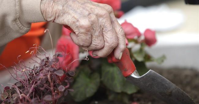 Ohio woman's 100th birthday wish: doing yard work