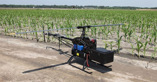 Unmanned aerial vehicles are flying to the farm
