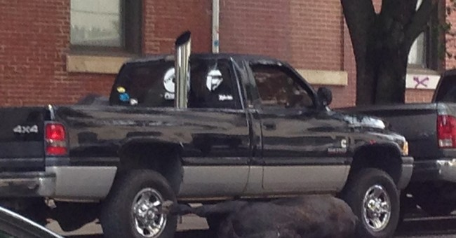 Baltimore police shoot cow running loose in city