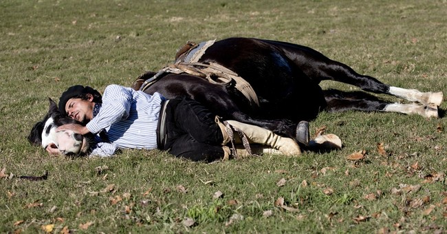 Argentine gaucho tames with whispers, not whips