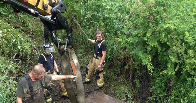3-hour effort rescues horse from Oregon mud hole
