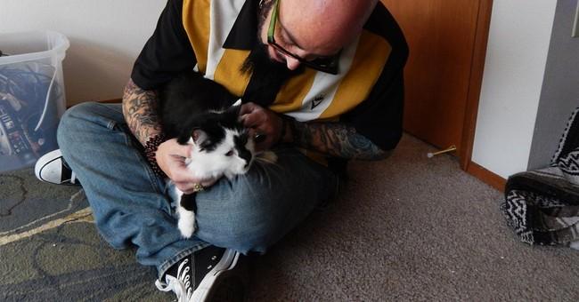 Fierce feline who terrorized family stumps TV host