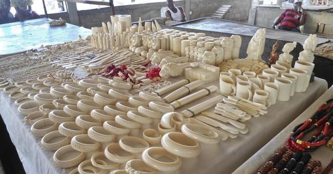 Ivory for sale in Angola; big tuskers die in Kenya