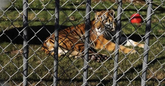 Tony the Tiger stays put at Louisiana truck stop