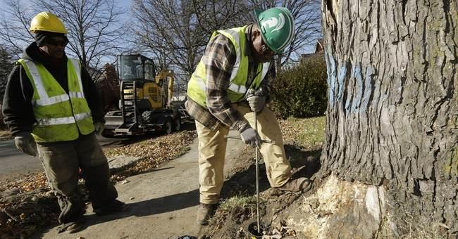 UN help sought to restore Detroit water service