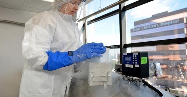 Designer T cells fight viruses after transplants